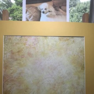 Your Beloved Pet's Energetic Portrait - Personalized